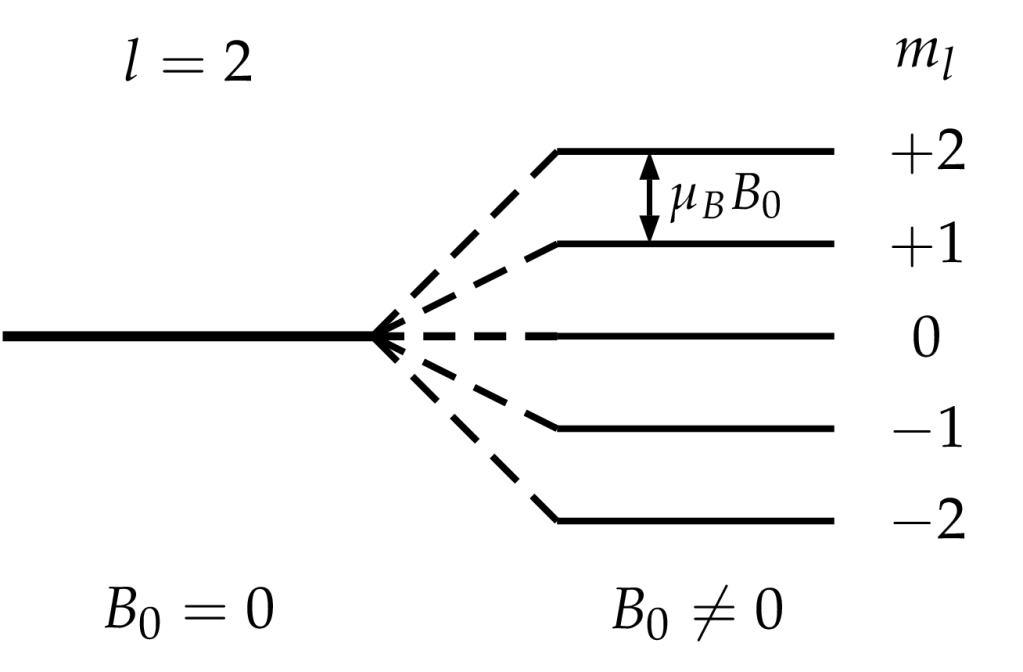 Zeeman-Effekt ohne Spin-Berücksichtigung beim l=2-Energieniveau